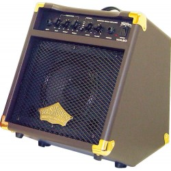 Amplificador de guitarra acústica Washburn WA20