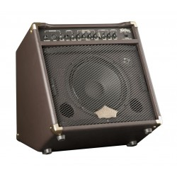 Amplificador de guitarra acústica Washburn WA30