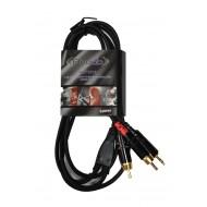 Cable Mini-plug –  2 RCA Prodb 1,5 metros